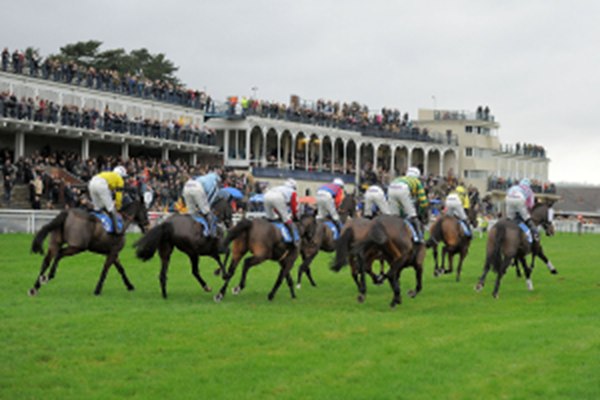 Exclusive Raceday Experience at Ludlow Racecourse