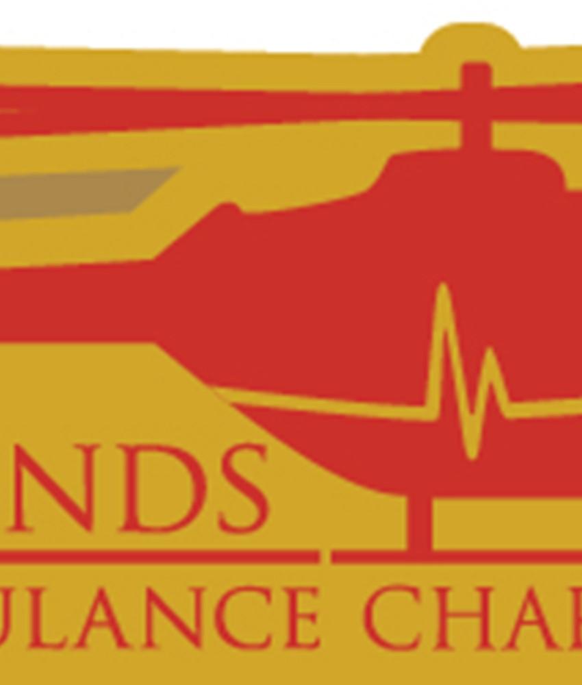 29th Anniversary Badge