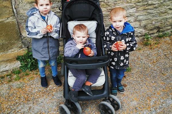 Family's Tomato Plants Grow Fundraising Gold